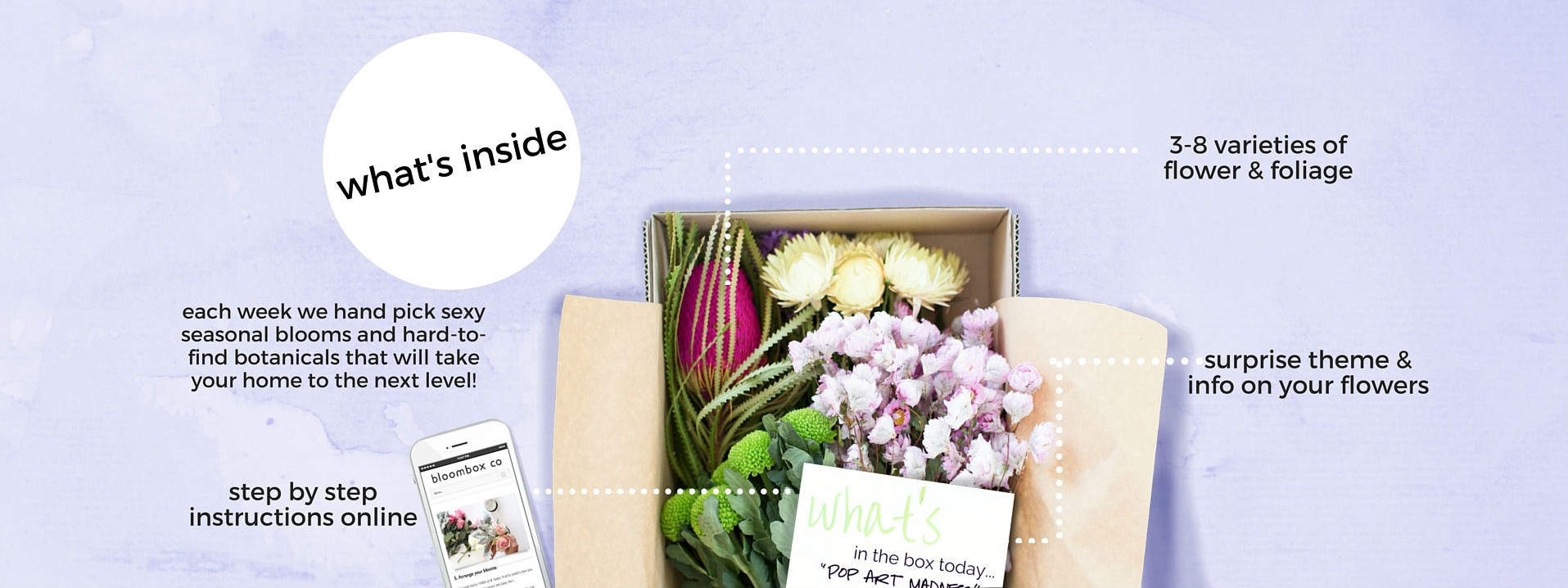 BLOOMBOX CO Subscription Fresh Flowers delivery Sydney Melbourne Brisbane