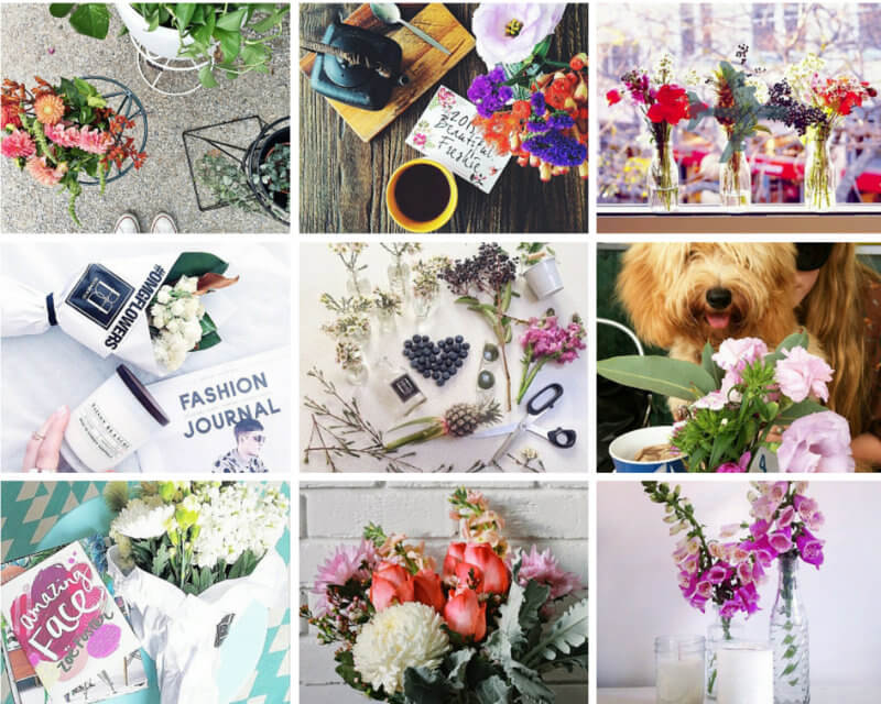 bloombox co petal obsession
