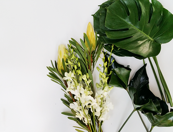 tropical-flower-delivery-sydney
