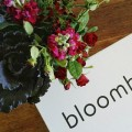 bloombox co winter solstice flowers