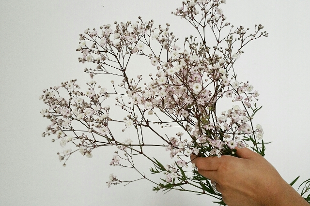 gypsophilia diy southern style flower tutorial