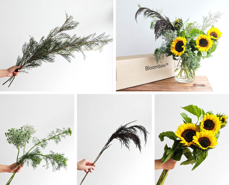 Rustic Sunflower and Grevillea flower arrangement tutorial ingredients