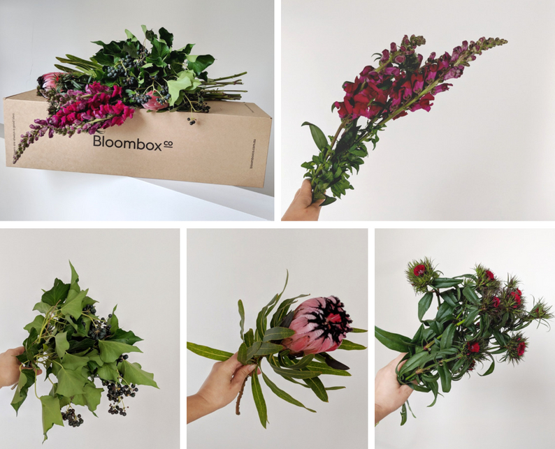 Protea, snapdragon, sweet william and ivy berry gothic flower arrangement tutorial
