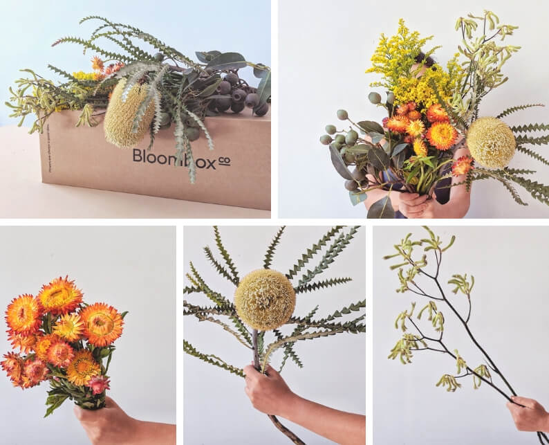 Australia Day Inspired Flower Arrangement With Native Flowers - What You'll Need