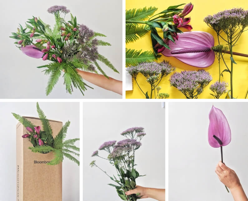 flower tutorial ingredients - what you'll need