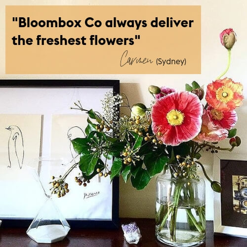 Flower Delivery Sydney and Melbourne Testimonial Poppies