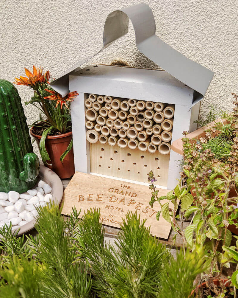 Bloombox Co Rooftop Bee Sanctuary with Bee Hotel