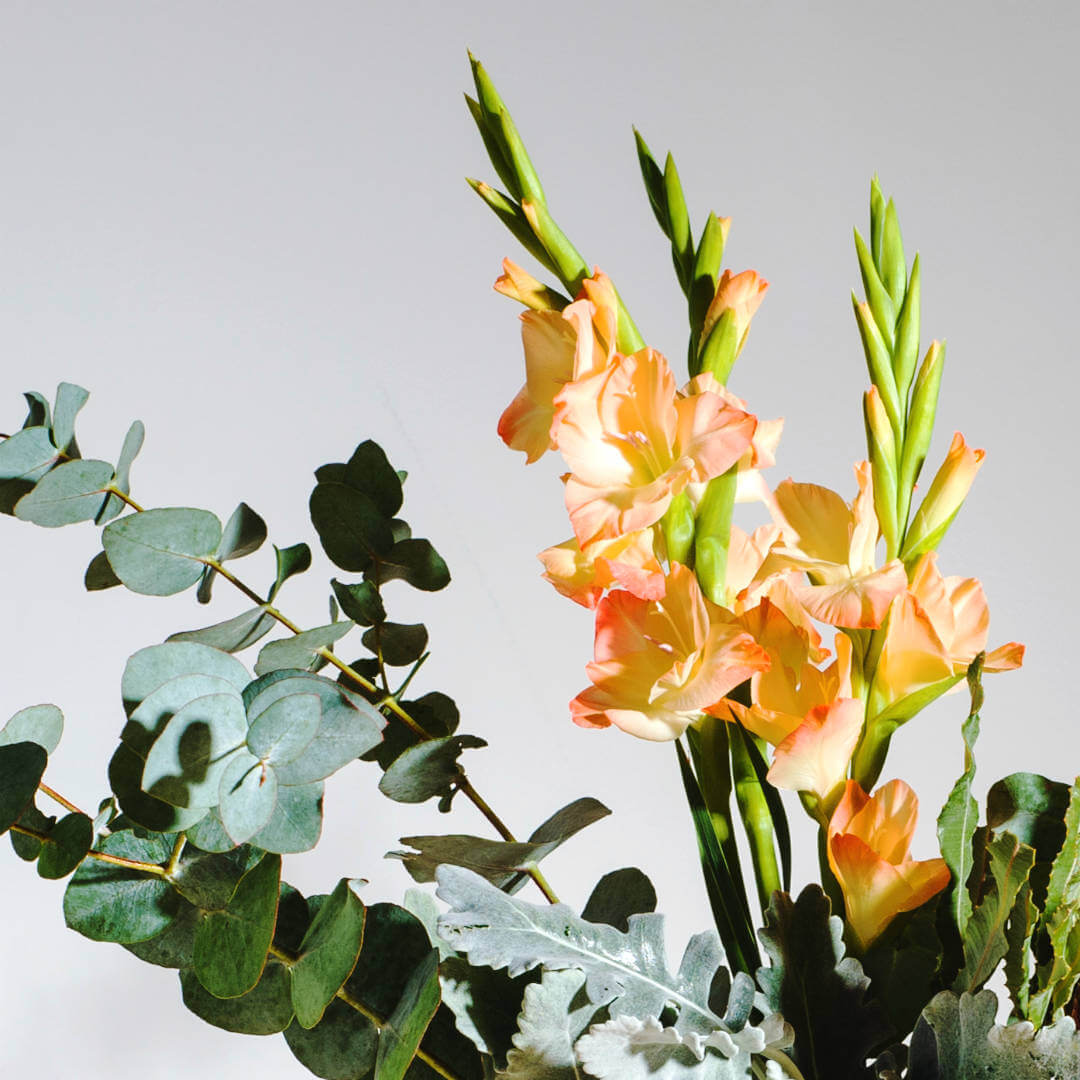 Pantone Colour of The Year Living Coral Gladioli