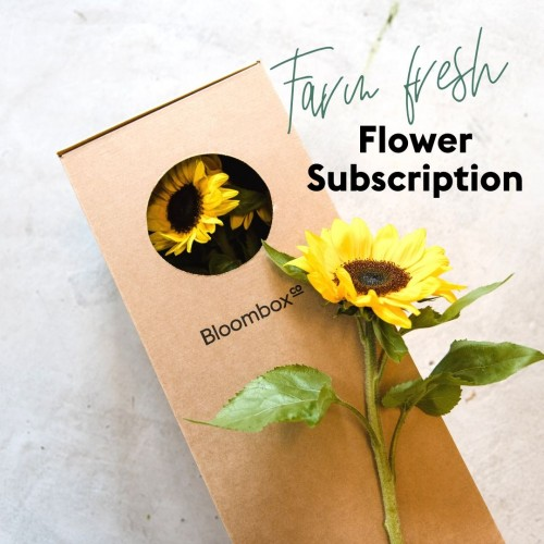Bloombox Co Farm To Door Subscription
