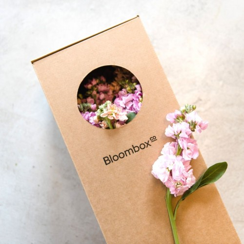 Boxed stocks flowers on subscription