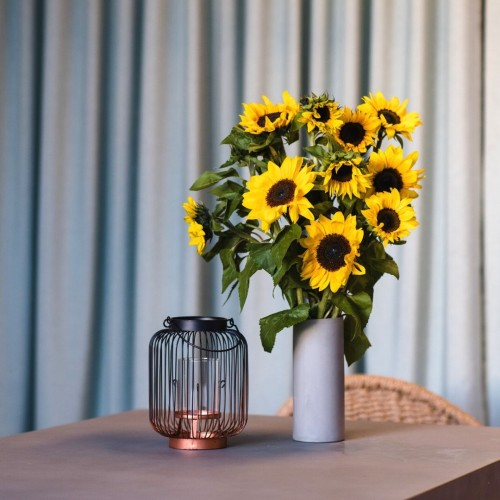 Sunflowers on table home subscription