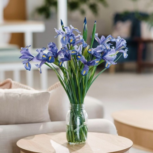 iris 20 stems glass vase side table